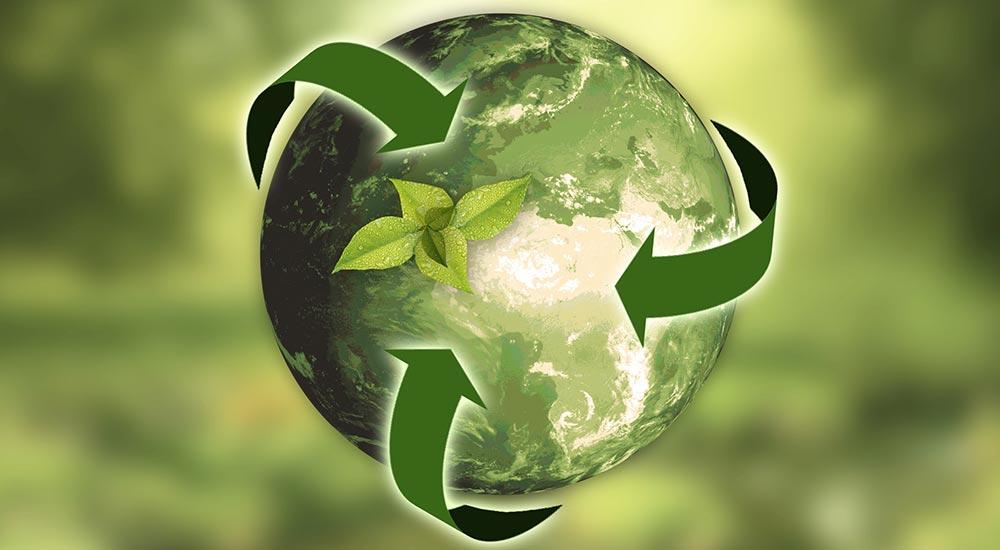 Reciclarea de la o problema majora, la afacere. Cum poti castiga din prietenia cu mediul